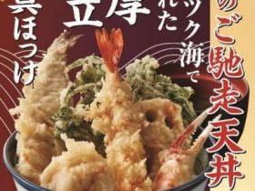 ロイヤルHD、「天丼てんや」が「冬のご馳走天丼」を期間限定販売