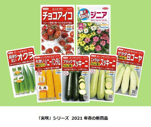 サカタのタネ、絵袋種子「実咲」シリーズからミニトマト「チョコアイコ」など2021年春の新商品7点を発売