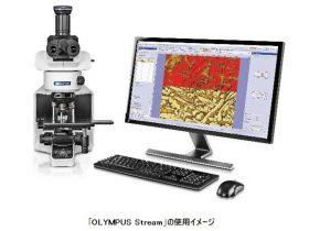 オリンパス、「TruAI」を搭載した顕微鏡用画像解析ソフトウェア「OLYMPUS Stream」バージョン2.5