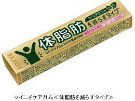 ロッテ、機能性表示食品「マイニチケアガム<体脂肪を減らすタイプ」