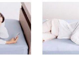 フランスベッド、うつ伏せ・仰向け・横向き寝のそれぞれにフィットする低反発枕「ウミガメピロー」