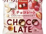 ロッテ、「ガーナ生チョコレート<ミルクとベリーのアソート>」などを発売