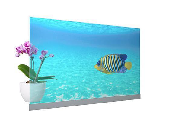 パナソニック、映像の視認性に優れた55V型「透明有機ELディスプレイモジュール」を発売