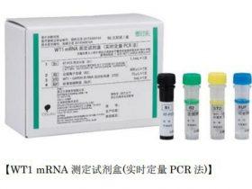 大塚製薬、中国において体外診断用医薬品 WT1 mRNA測定キット