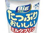雪印メグミルク、「たっぷりおいしいミルクプリン」