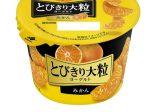 北海道乳業、「とびきり大粒ヨーグルト みかん」